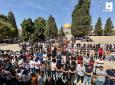 صلاة الجمعة في ساحات المسجد الأقصى 3