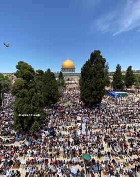 صلاة الجمعة الأخيرة من رمضان في الأقصى