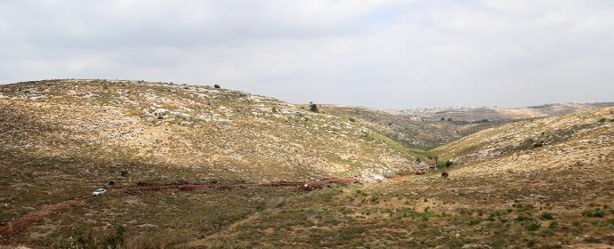 رام الله - مستوطنون يشقون طريقًا استيطانيًا في اراضي المواطنين في بلدة نعلين وقرية دير قديس