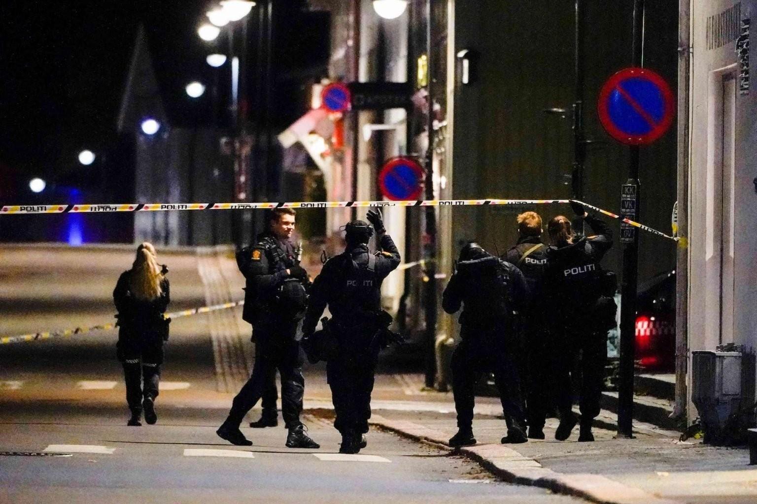 قوات شرطة نرويجية في مكان الهجوم 2